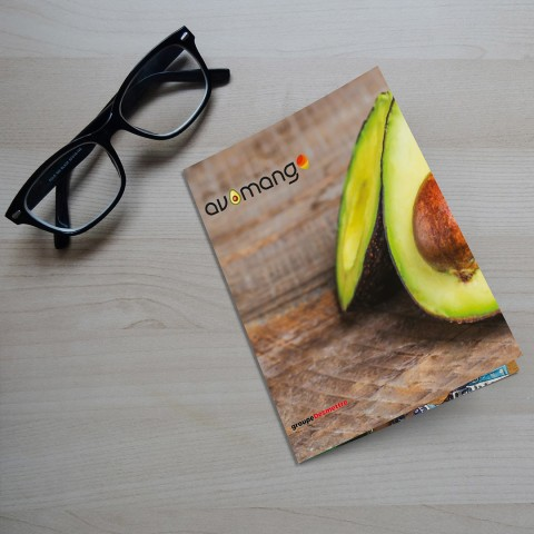 avomango dossier INST portada